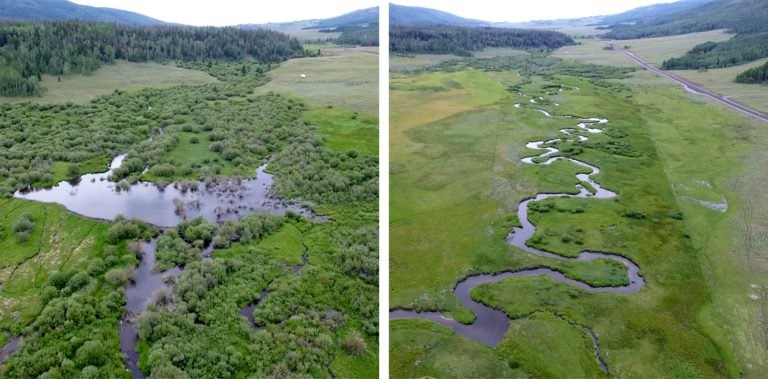 """Two sections of the River Utah, where the North American beaver is present on the left, and absent on the right. Credit: Stacy Passmore, """"Landscape with Beavers,"""" Places Journal, July 2019"""
